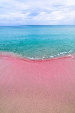 Index of wp content uploads 2014 03 for Pink sands harbour island bahamas